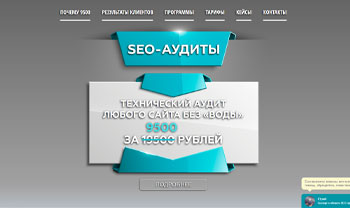 seo-audit.website